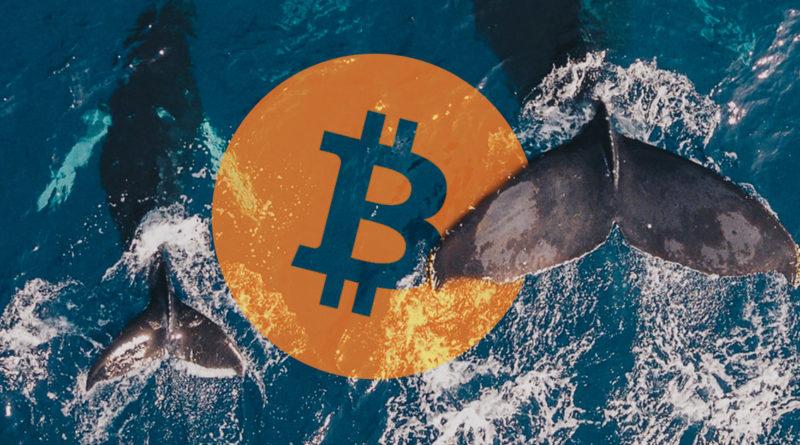 bitcoin átutalás