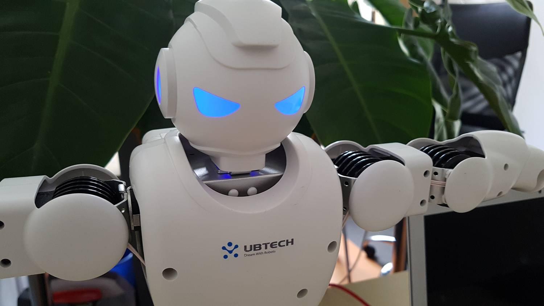 kullancs kereskedő robot gyors és legális pénzkereseti mód