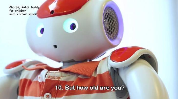 robot a tőzsdén való kereskedéshez hogyan működik
